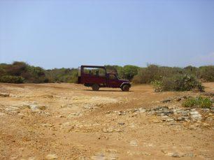 Bundala-Tour