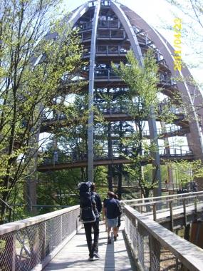 BayerischerWald-Baumwipfelpfad-Turm
