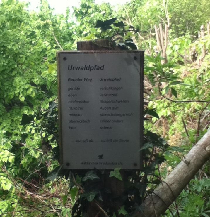 Walderlebnispfad-Urwaldpfad