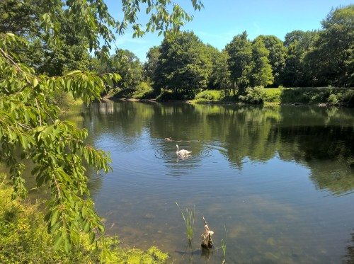Buergerpark-See