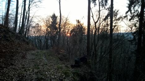 Auf der Lauer bei Sonnenuntergang