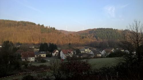 Spurensuche2016-Wald