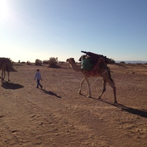 Marokko2016-IndieWueste3