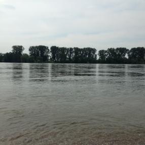 Rhein-Mai2016