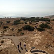 Mount Barkan View