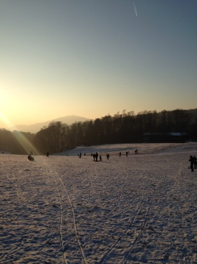 winter2017-rodelnindersonne