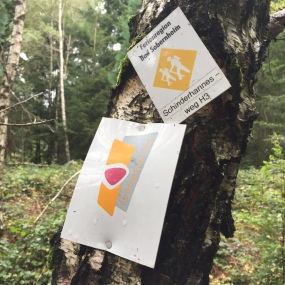 Beschilderung des Soonwaldsteigs